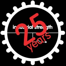 25-Year-IS-Logo